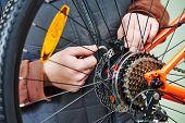 pic of bicycle gear  - Mechanic serviceman repairman installing assembling or adjusting bicycle gear on wheel in workshop - JPG