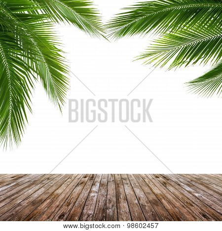 Coconut Leaves And Wood Floor Isolated On White Background