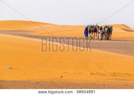 Local people with camels on sand dunes in Merzouga, Morocco