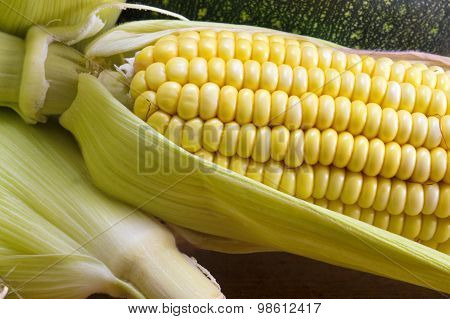 Fresh Yellow Corn Cob