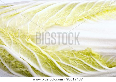 Close up chinese cabbage