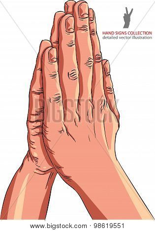 Praying hands, detailed vector illustration. Spiritual theme symbol