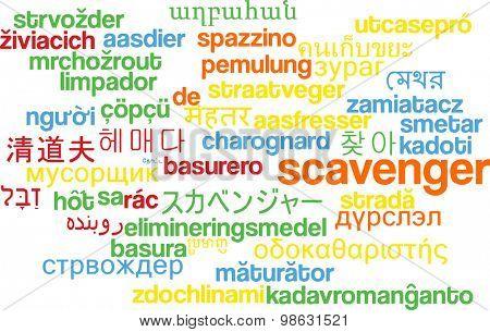 Background concept wordcloud multilanguage international many language illustration of scavenger