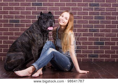 Girl Sitting Near Wall Next To The Dog Cane Corso And She Tilted Her Head