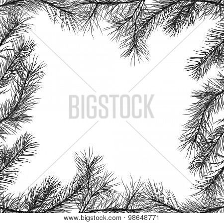 illustration with frame from pine branch isolated on white background