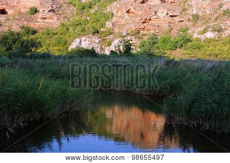 Overgrown River Against Rock Background