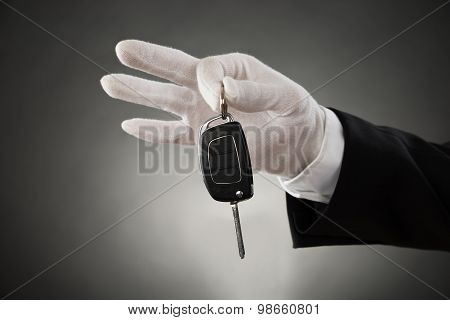 Waiter Hands Holding Car Key