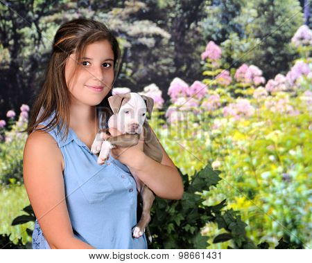 A attractive young teen happily holding her new pitbull puppy on a beautiful, sunny spring day.
