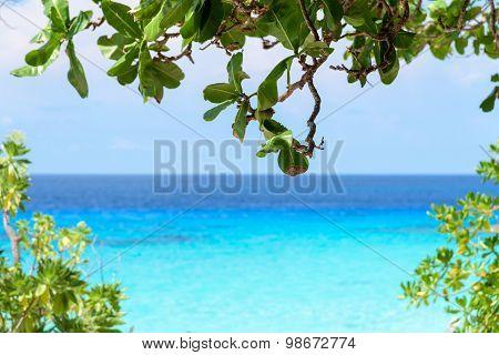 Beautiful Blue Sea At Koh Miang In Mu Koh Similan, Thailand