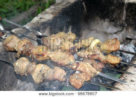Pork shish kebab on skewers