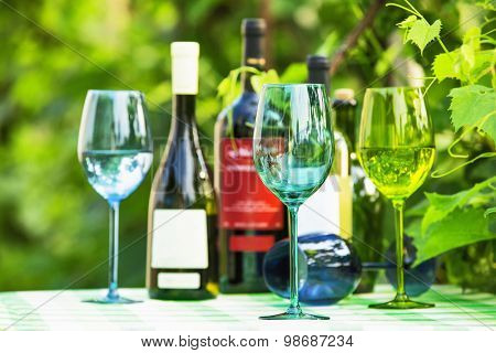 Colored wine glasses in green leaves of grape