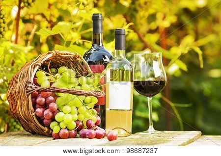 Red and white grapes in a basket and bottles of wine on background grape leaves
