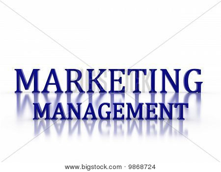 3D Letters Spelling Marketing Management In Dark Blue