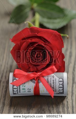 single red rose and bunch of dollar bills