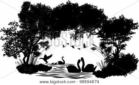 animals of wildlife (Swan)  vector abstract design