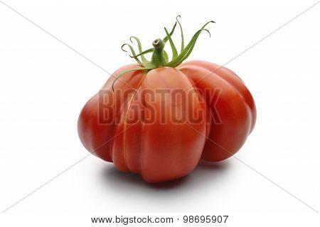 Beefsteak Tomatoes 1