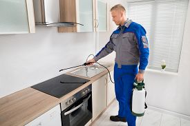 stock photo of pest control  - Young Male Pest Control Worker Spraying Pesticide On Induction Hob In Kitchen - JPG