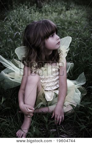 A beautiful young girl sitting in the grass in a fairy costume,slight color desaturation for mystical look,soft focus and vignetting