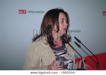 Speaker at a political meeting 11