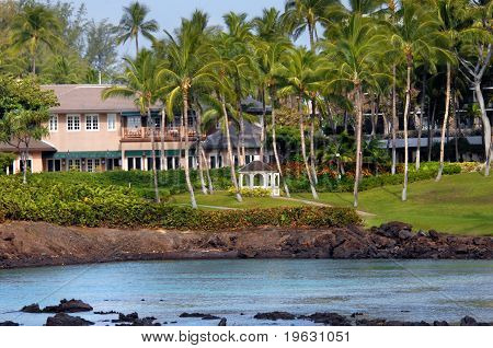 Aloha To Tranquility