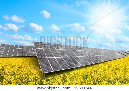 Solar energy panels on a rape field against sunny sky.