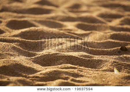 Beach sand background. Shallow focus depth on center
