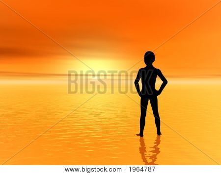 Sunset_Boy