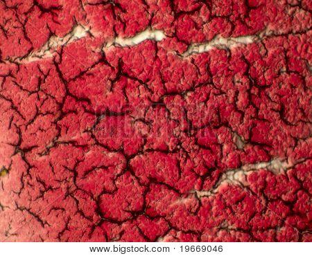 Coagulated Blood On Microscope