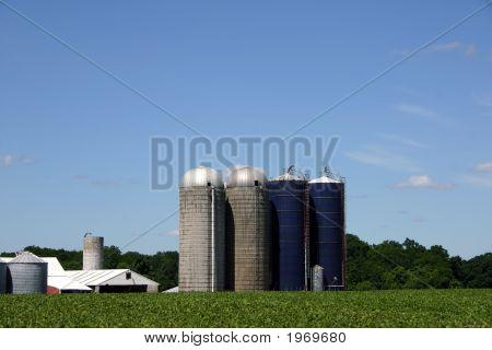 New Jersey Farm - Outbuildings