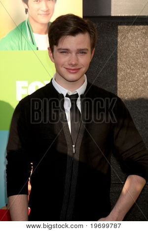 LOS ANGELES - JUL 27:  Chris Colfer arrives at Fox's