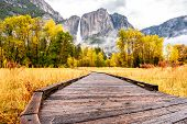 Meadow with boardwalk in Yosemite National Park Valley with Yosemite Falls at cloudy autumn morning. poster
