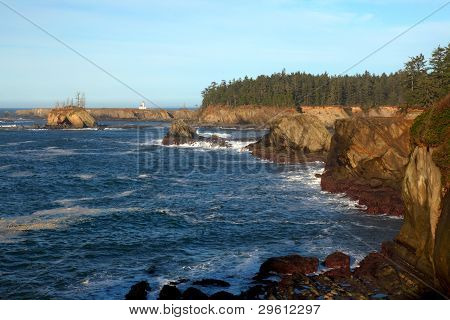 Oregon coast portrait