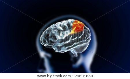 The Crystal Brain Part6