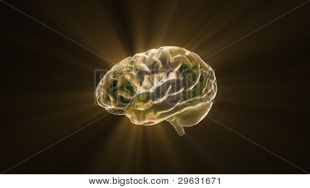 Gold Crystal Brain Still Render