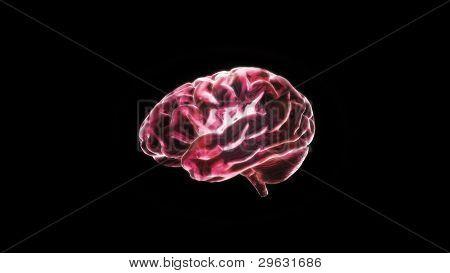 Red Crystal Brain Still Render