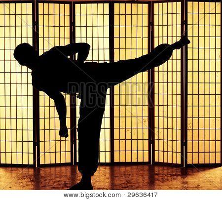 Man practicing a martial art kung fu kick
