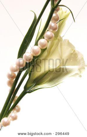 Jewel And Flower