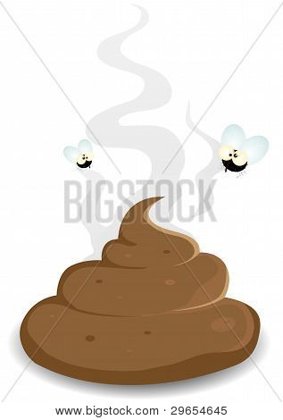 Housefly On A Dung Pooh