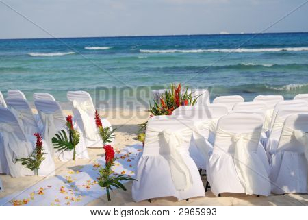 Guests Needed For Beach Wedding!