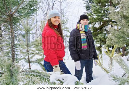 Happy young woman and man standing in snow fir forest outdoor