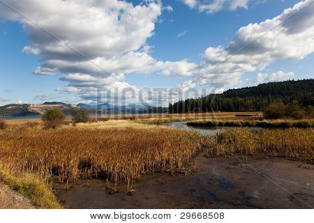 Marshes And Mountains