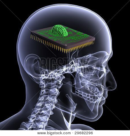 Skeleton X-ray - Cpu Brain