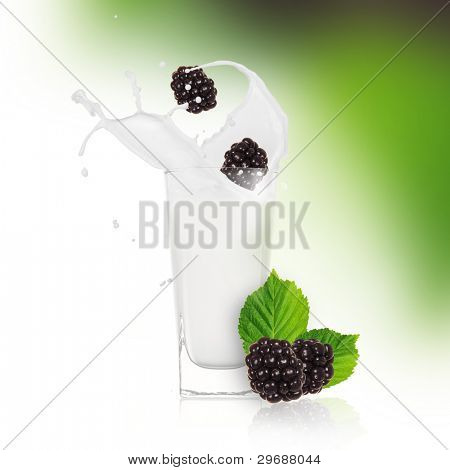 Blackberries with milk splash over white