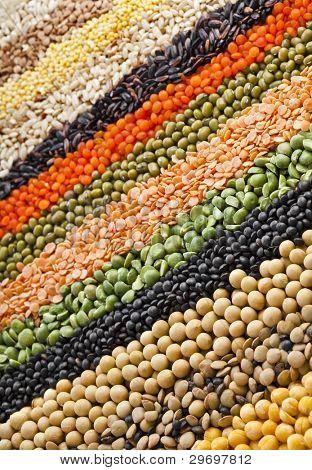 bunte Streifen Reihen von Linsen, Sojabohnen, Erbsen, Buchweizen, Soja, Hülsenfrüchte, Reis, Kulisse
