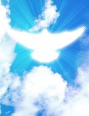 stock photo of pentecostal  - shining dove with rays on a sky background - JPG