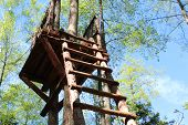 Photo Tower Built In The Forest.tower Of Wood.the Observation Tower Stands High Against The Tree.the poster