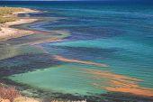 stock photo of cortez  - Along the Shoreline of the Sea of Cortez - JPG