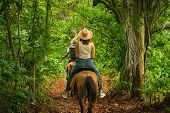 Horse Ride Through Jungle In Vacation. Horse Ride In Jungle Nature. Green Jungle Nature. Vacation. N poster