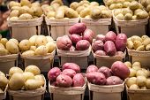 White, Yellow And Red Potatoes On A Canadian Market In Montreal, Quebec. Potatoes Are One Of The Big poster