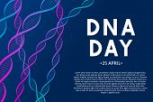 Dna Day Typography Poster. Science  Concept Vector Illustration. Neon Helix Of Human Dna Molecule.   poster
